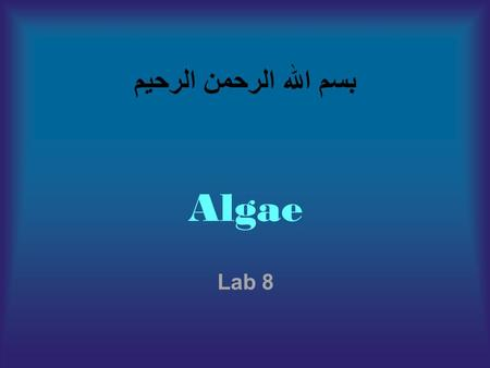بسم الله الرحمن الرحيم Algae Lab 8. Algae : are alarge and diverse group of Photosynthetic, eukaryotic, plant-like organisms that use chlorophyll in capturing.