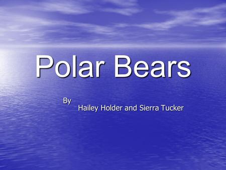 Polar Bears By Hailey Holder and Sierra Tucker. Strong Front Paws Large Canine Teeth Polar Bear Diagram Hollow Fur (Not White!) Flat Pads On Bottoms Of.