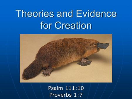Intelligent Design Tuesday October 2 Creationism
