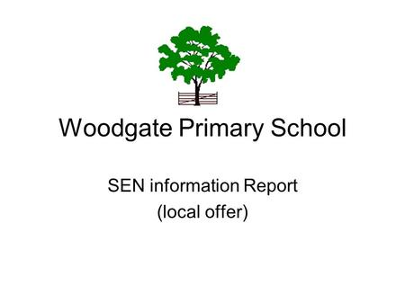 Woodgate Primary School SEN information Report (local offer)
