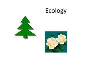 Ecology. Ecology-study of organisms and their interactions with the environment Biotic factorsAbiotic- non-living.