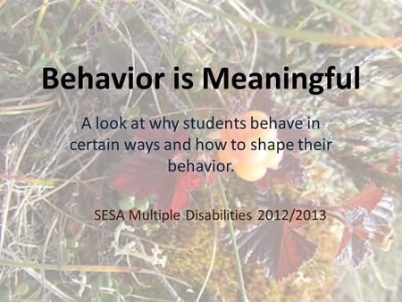 Behavior is Meaningful A look at why students behave in certain ways and how to shape their behavior. SESA Multiple Disabilities 2012/2013.