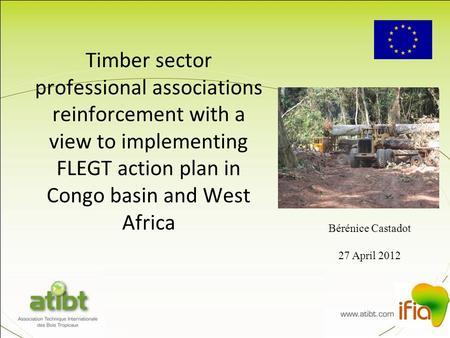 Timber sector professional associations reinforcement with a view to implementing FLEGT action plan in Congo basin and West Africa Bérénice Castadot 27.