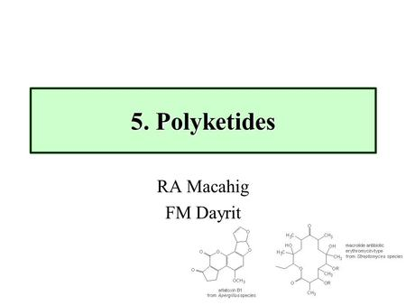 5. Polyketides RA Macahig FM Dayrit. 5. Polyketides (Dayrit)2 Polyketides rank among the largest group of secondary metabolites in terms of diversity.