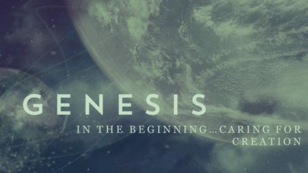 IN THE BEGINNING…CARING FOR CREATION.