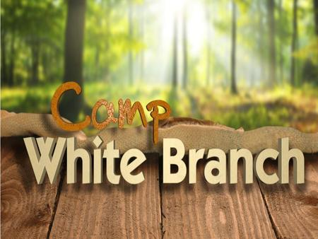 Ways You Can Support the Camp White Branch Fundraising Sunday on October 11 th to Raise $500k for the Multi-Purpose Building 1. Pray for the ongoing ministry.