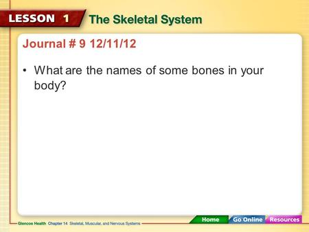 Journal # 9 12/11/12 What are the names of some bones in your body?