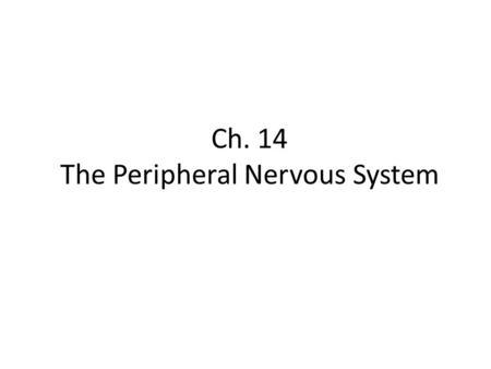 Ch. 14 The Peripheral Nervous System. Objectives Know the divisions of the PNS Know the various types of general sense receptors Be able to describe the.