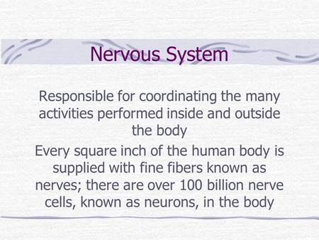 Nervous System Responsible for coordinating the many activities performed inside and outside the body Every square inch of the human body is supplied with.