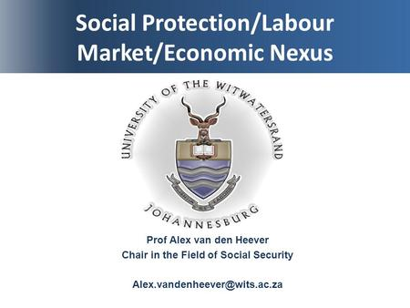Social Protection/Labour Market/Economic Nexus Prof Alex van den Heever Chair in the Field of Social Security