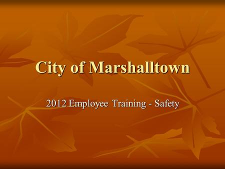 City of Marshalltown 2012 Employee Training - Safety.