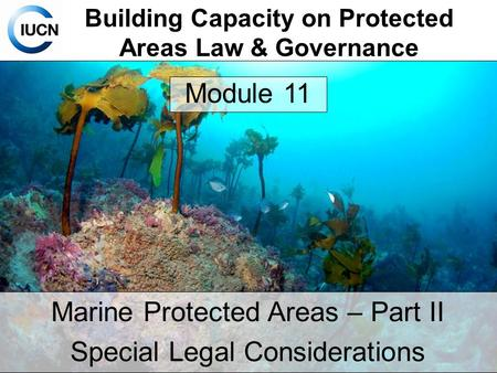 Building Capacity on Protected Areas Law & Governance Marine Protected Areas – Part II Special Legal Considerations Module 11.