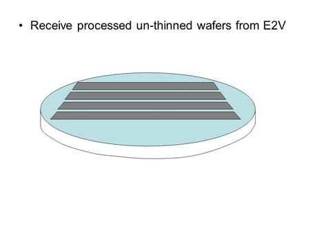 Receive processed un-thinned wafers from E2V. Processed for bump bonding (dice, bump and attach read out chip)