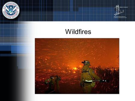 Wildfires. Facts About Wildfires Wildfires are usually triggered by lightning or accidents Wildfires spread quickly igniting brush, trees, and homes.