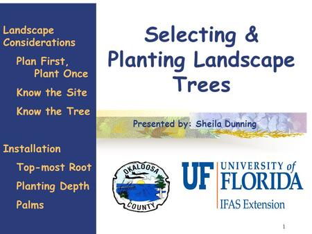 1 Selecting & Planting Landscape Trees Landscape Considerations Plan First, Plant Once Know the Site Know the Tree Installation Top-most Root Planting.