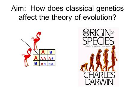 Aim: How does classical genetics affect the theory of evolution?