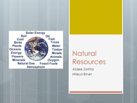 Natural Resources Aidee Zorrilla Hilleyri Binet. What does it mean?  Natural resources: materials or substances such as minerals, forests, water, and.