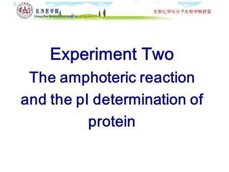 determination of isoelectric point of protein essay This feature is not available right now please try again later.