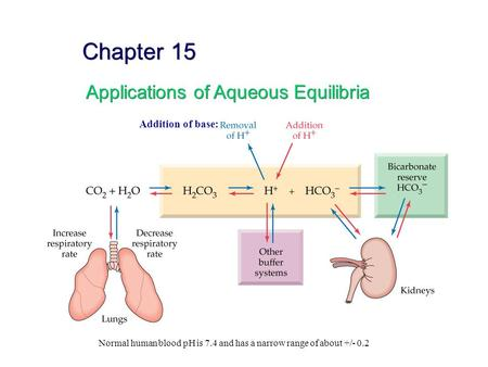 Chapter 15 Applications of Aqueous Equilibria Addition of base: Normal human blood pH is 7.4 and has a narrow range of about +/- 0.2.