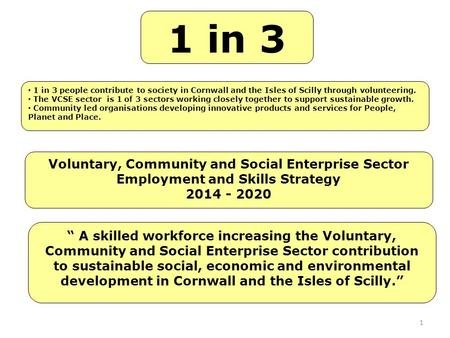 "1 Voluntary, Community and Social Enterprise Sector Employment and Skills Strategy 2014 - 2020 1 in 3 "" A skilled workforce increasing the Voluntary, Community."