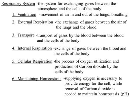 Respiratory System-the system for exchanging gases between the atmosphere and the cells of the body 1. Ventilation-movement of air in and out of the lungs;