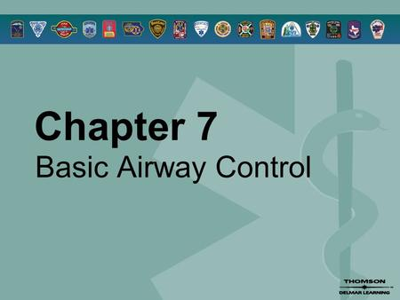 Chapter 7 Basic Airway Control. © 2005 by Thomson Delmar Learning,a part of The Thomson Corporation. All Rights Reserved 2 Overview  Anatomy Review 