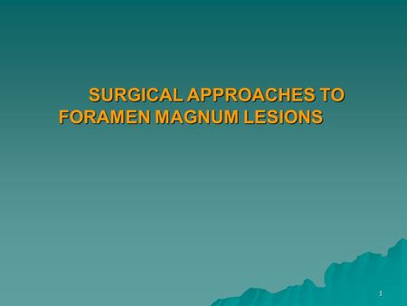 SURGICAL APPROACHES TO FORAMEN MAGNUM LESIONS