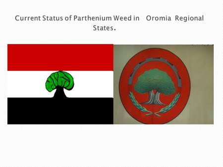 Current Status of Parthenium Weed in Oromia Regional States.