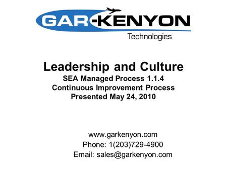 Leadership and Culture SEA Managed Process 1.1.4 Continuous Improvement Process Presented May 24, 2010  Phone: 1(203)729-4900