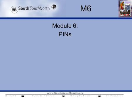 Module 6: PINs M6. M6. PINs Contents: Project Identification Notes – how to structure them (including eligibility, baselines and additionality) Two projects.