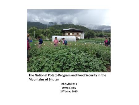 The National Potato Program and Food Security in the Mountains of Bhutan IPROMO 2015 Ormea, Italy 24 th June, 2015.