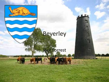 Beverley Jack Forrest 8F. What gave Beverley its name and how did it become a town Beverley means beaver stream because once beavers were very common.