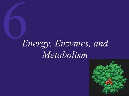 6 Energy, Enzymes, and Metabolism. 6 Energy and Energy Conversions To physicists, energy represents the capacity to do work. To biochemists, energy represents.