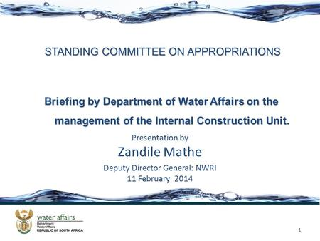 STANDING COMMITTEE ON APPROPRIATIONS Presentation by Zandile Mathe Deputy Director General: NWRI 11 February 2014 1 Briefing by Department of Water Affairs.