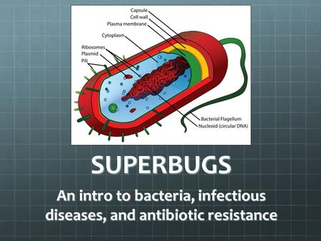 An intro to bacteria, infectious diseases, and antibiotic resistance