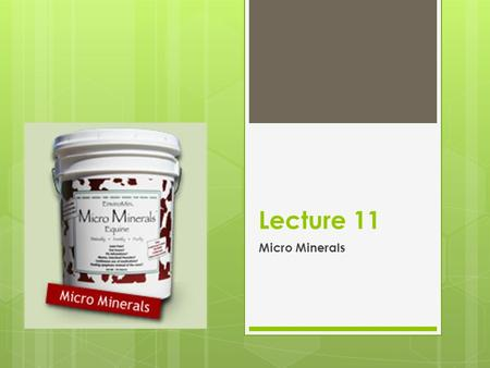 Lecture 11 Micro Minerals. Introduction  Eight Micro-minerals:  Se & Mn  Cu & Zn  Mo & Co  I & Fe  Generally expressed as mg/kg or ppm.