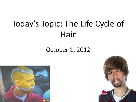 Today's Topic: The Life Cycle of Hair October 1, 2012.