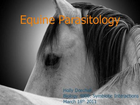 Equine Parasitology Holly Dorchak Biology 4800: Symbiotic Interactions