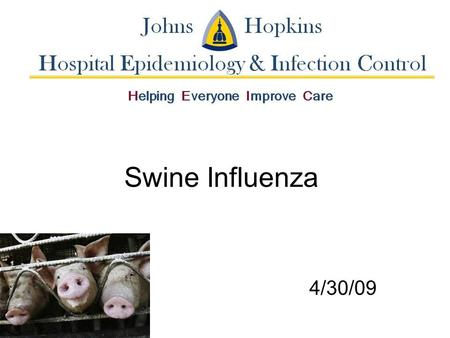Swine Influenza 4/30/09. Background Swine Influenza (swine flu) is a respiratory disease of pigs caused by type A influenza virus –Regularly causes outbreaks.