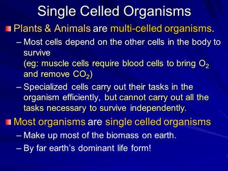 Single Celled Organisms Plants & Animals are multi-celled organisms. –Most cells depend on the other cells in the body to survive (eg: muscle cells require.