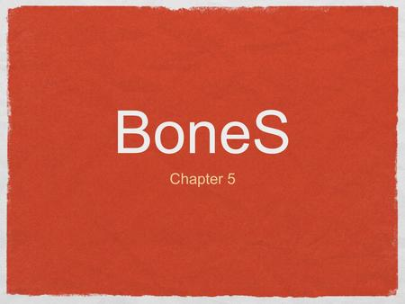BoneS Chapter 5. Functions of the Bones Besides body shape and form there are several important body functions: Support: Bones, are the steel girds and.