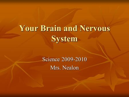 Your Brain and Nervous System Science 2009-2010 Mrs. Nealon.