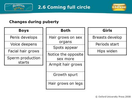 Preoduction Puberty boys sperm