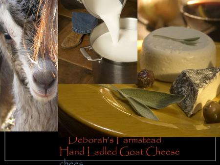 Deborah's Farmstead Hand Ladled Goat Cheese chees.