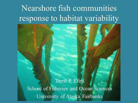 Nearshore fish communities response to habitat variability Terril P. Efird School of Fisheries and Ocean Sciences University of Alaska Fairbanks.