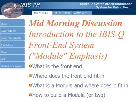 Mid Morning Discussion Introduction to the IBIS-Q Front-End System (Module Emphasis) What is the front end Where does the front end fit in What is a.