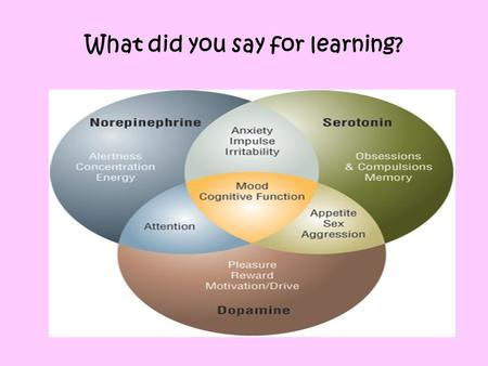 What did you say for learning?. Learning Norepinephrine (alertness, concentration) Dopamine (Reward) In addition: Endorphins Cortisol decreased Adrenaline.