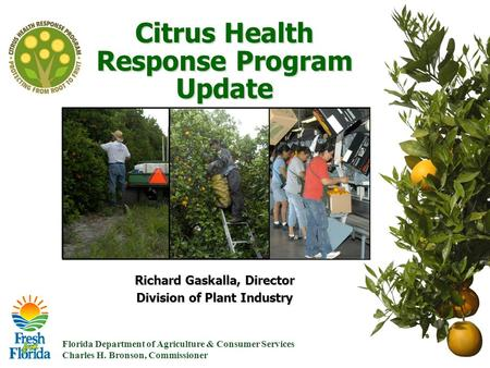 Florida Department of Agriculture & Consumer Services Charles H. Bronson, Commissioner Citrus Health Response Program Update Richard Gaskalla, Director.