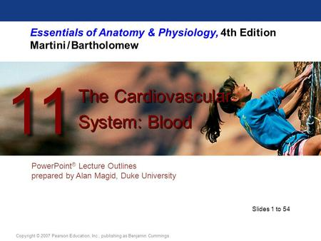 Essentials of Anatomy & Physiology, 4th Edition Martini / Bartholomew PowerPoint ® Lecture Outlines prepared by Alan Magid, Duke University The Cardiovascular.