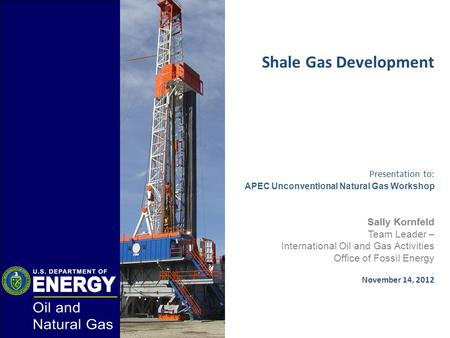 Shale Gas Development Presentation to: APEC Unconventional Natural Gas Workshop Sally Kornfeld Team Leader – International Oil and Gas Activities Office.
